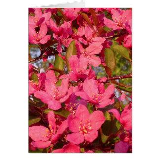 Tarjeta Flores de Apple de cangrejo