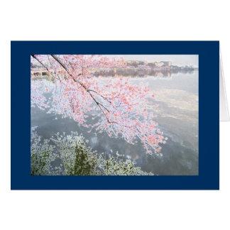 Tarjeta Flores de cerezo en el lavabo de marea, Washington