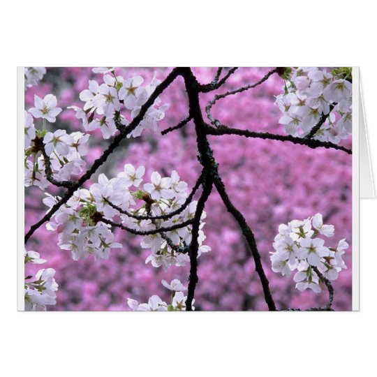 Tarjeta Flores de cerezo japonesas