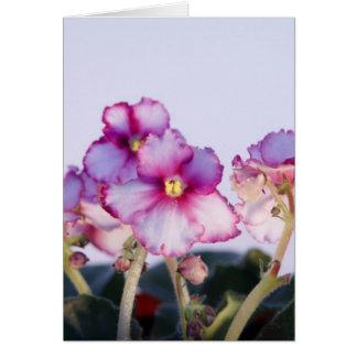 Tarjeta (flores de las violetas)