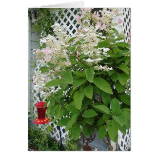 Tarjeta Flores en alimentador del enrejado y del colibrí
