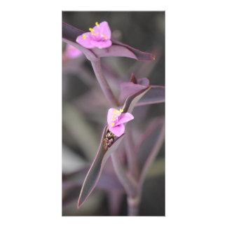 Tarjeta Flores púrpuras