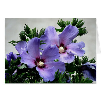 Tarjeta Flores saludo