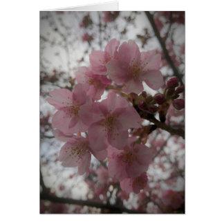 Tarjeta Flores tempranos de Sakura