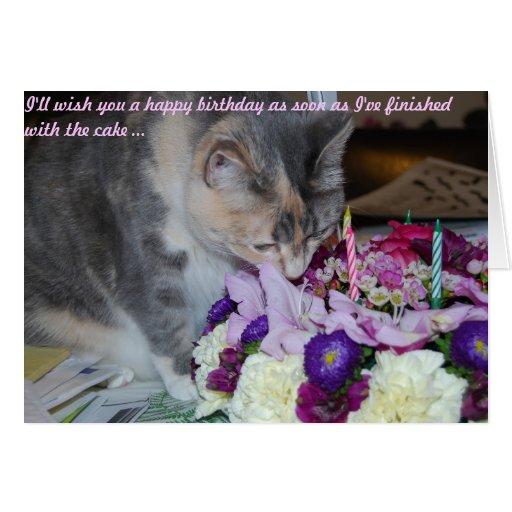 Tarjeta, flores y gato de cumpleaños