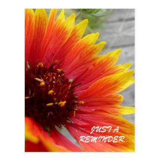 Tarjeta florida del recordatorio postal