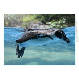 Tarjeta Flotador del pingüino