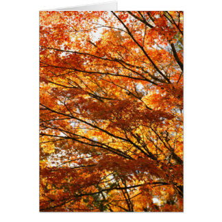 Tarjeta Follaje del árbol de arce