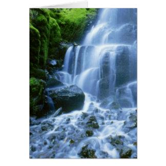 Tarjeta Foto de la multa de la cascada del río Columbia