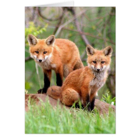 Tarjeta Foto de los equipos adorables del zorro rojo
