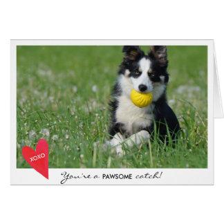 Tarjeta Foto del perro del el día de San Valentín usted es