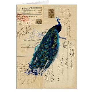 Tarjeta francesa de las postales del pavo real
