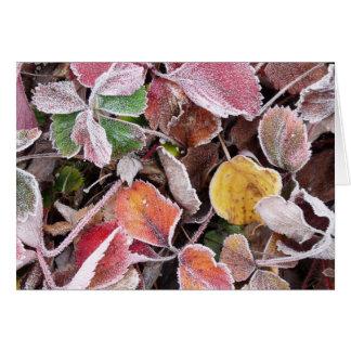 Tarjeta Fresas congeladas