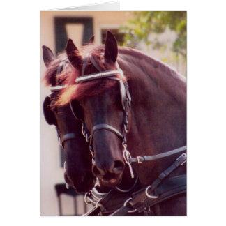 Tarjeta frisia de los caballos de carro
