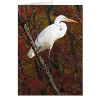 Tarjeta Gallinero del otoño