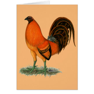 Tarjeta Gallo del rojo del jengibre del gallo de pelea