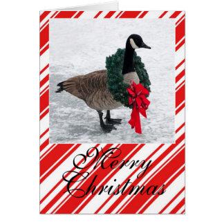 Tarjeta Ganso del navidad con la guirnalda