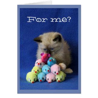 Tarjeta Gatito bizco con los ratones del juguete