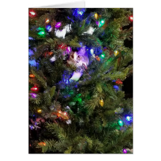 Tarjeta Gatito del árbol de navidad