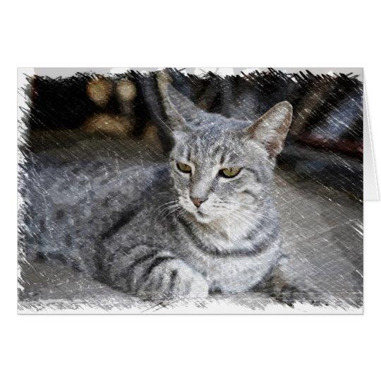 Tarjeta Gato
