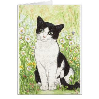Tarjeta Gato blanco y negro con las margaritas