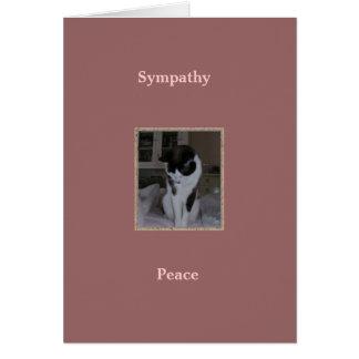 Tarjeta Gato, condolencia del mascota, paz