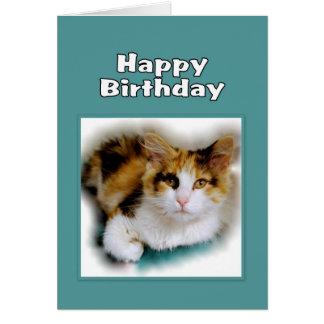 Tarjeta Gato de calicó del feliz cumpleaños