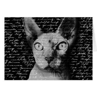 Tarjeta Gato de Sphynx