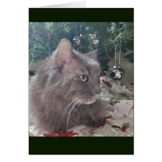 Tarjeta Gato debajo del árbol de Navidad