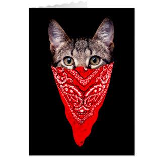 Tarjeta gato del gángster - gato del pañuelo - cuadrilla
