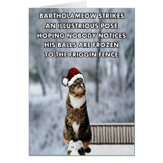 Tarjeta Gato divertido del navidad