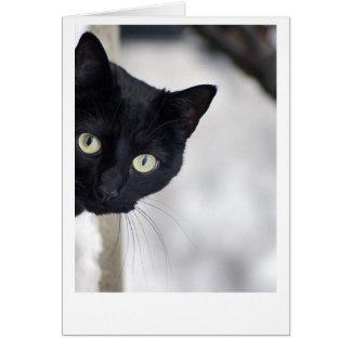 Tarjeta Gato negro