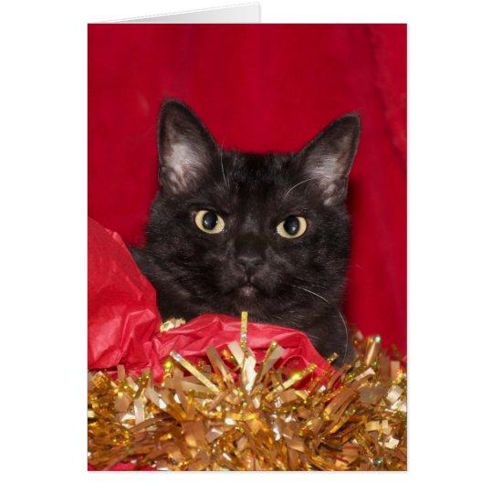 Tarjeta Gato negro del navidad