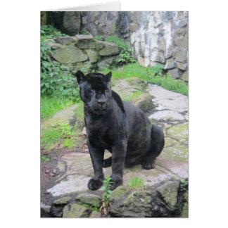 Tarjeta Gato negro grande de Jaguar en sentarse en roca