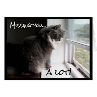 Tarjeta Gato que mira hacia fuera la ventana