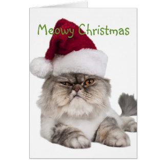 Tarjeta Gato tonto con el gorra de Santa