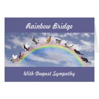 Tarjeta Gatos en el puente del arco iris