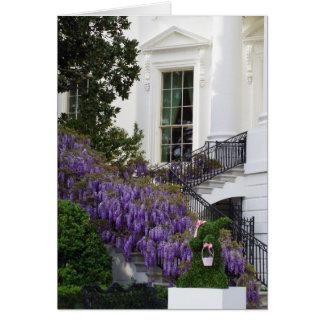 Tarjeta Glicinias Pascua de la Casa Blanca del Washington