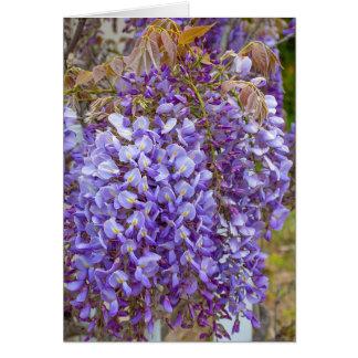 Tarjeta glicinias púrpuras