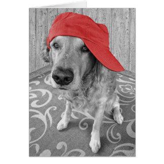 Tarjeta Golden retriever con el gorra-pensamiento rojo en