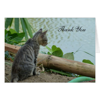 Tarjeta Gracias cardar - el pequeño gatito por el agua