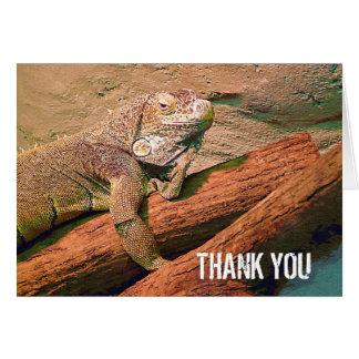 Tarjeta Gracias - lagarto perezoso