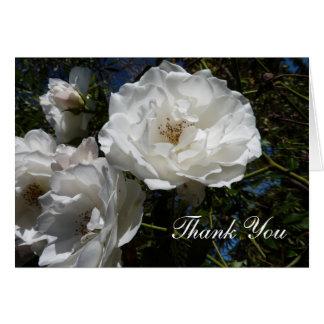 Tarjeta Gracias las notas - rosas blancos