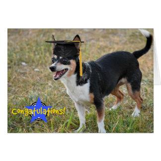 Tarjeta graduada del perrito