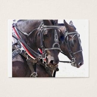 Tarjeta grande del perfil de los caballos