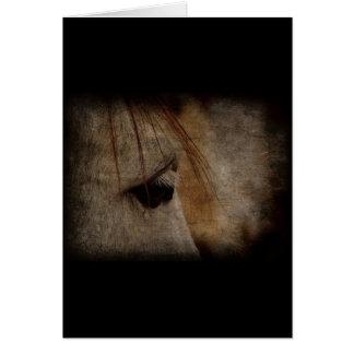 Tarjeta Grunge gris de la cara del caballo