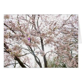 Tarjeta Hada del flor