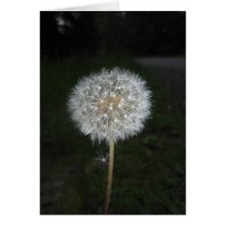 Tarjeta Haga un deseo