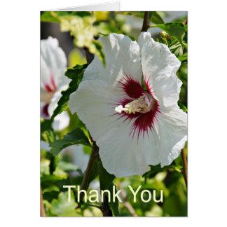 Tarjeta Hibisco del Wildflower, gracias