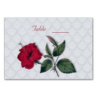Tarjeta Hibisco rojo y cordón blanco, fondo azul claro